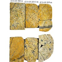 Captain Stained Petrographic Blocks from Hole C13-03